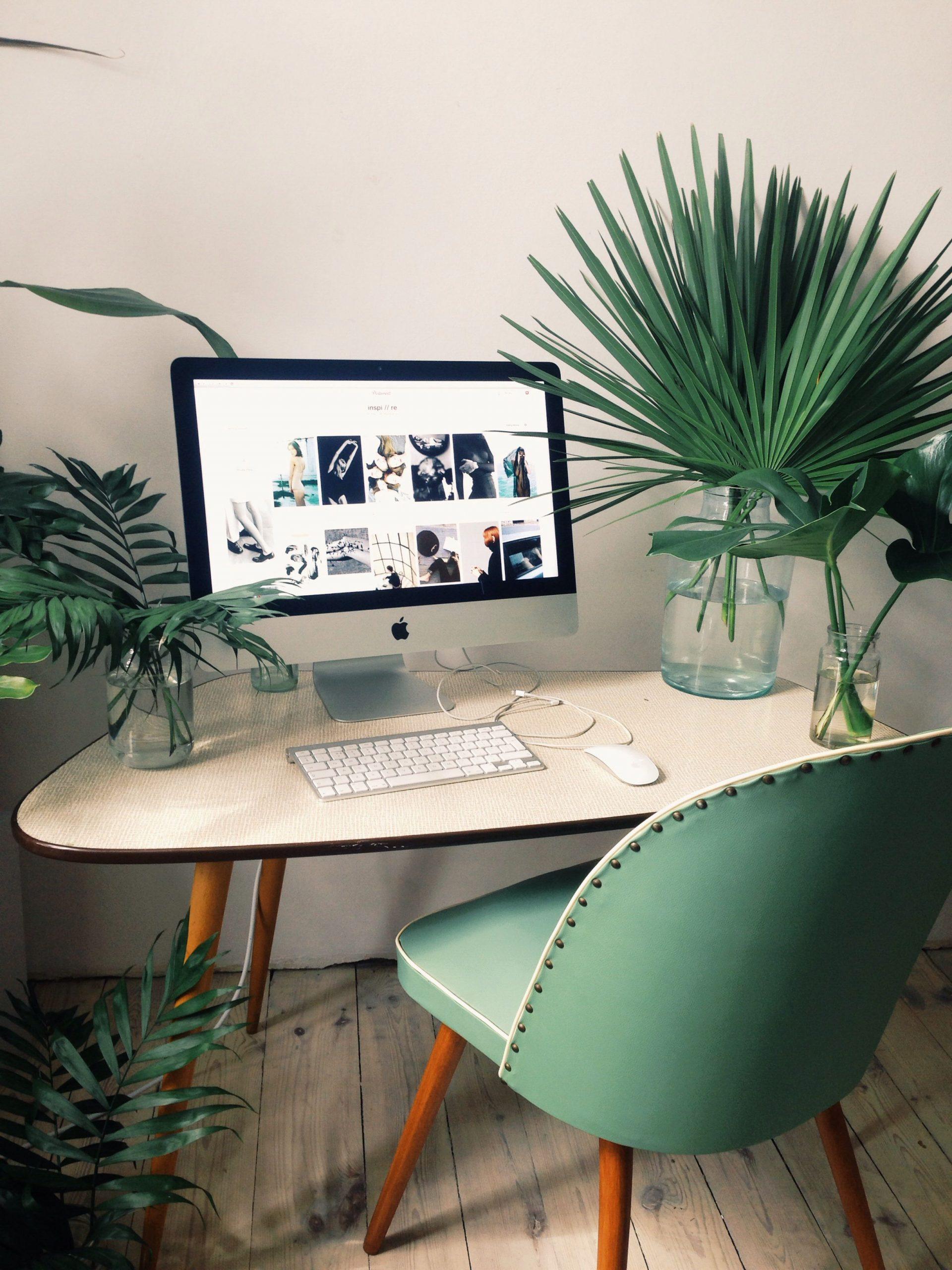 décoration tropicale bureau